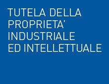 Tutela Della Proprieta' Industriale Ed Intellettuale