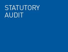 Statutory audit
