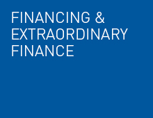 Financing and Extraordinary Finance